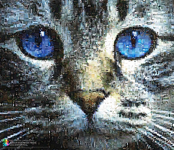 Photo mosaic with Cat