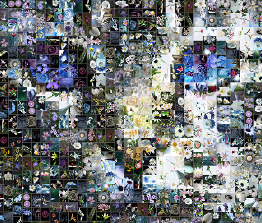 the best mosaic software