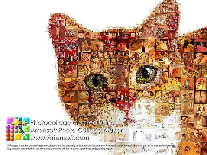 How to create photo montage using imovie