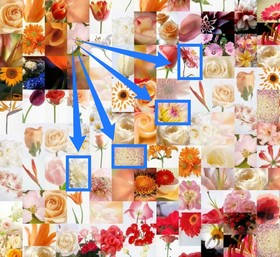 A Photomosaic of Artensoft Photo Mosaic Wizard is composed of elements of the same size