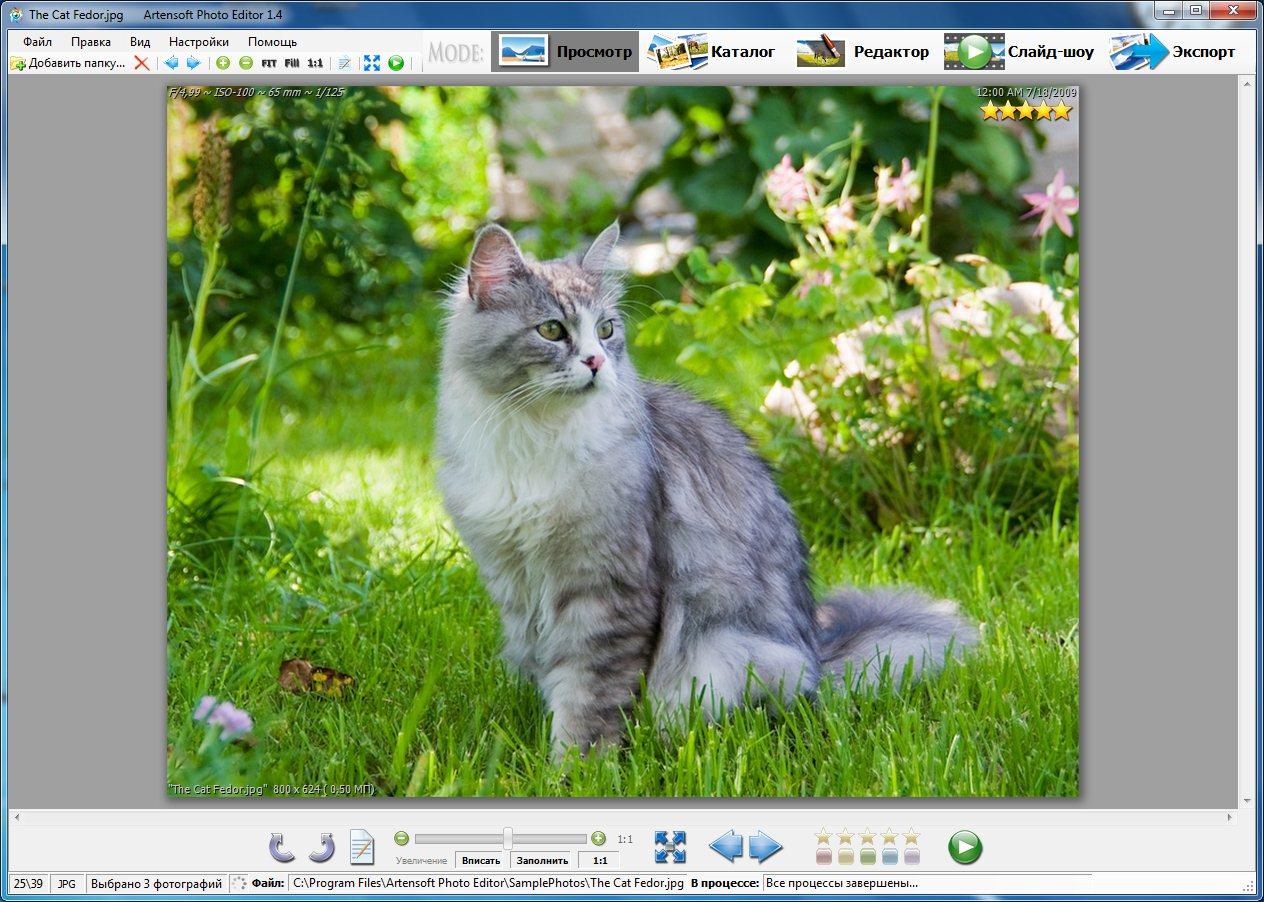 56 artensoft photo editor данная программа